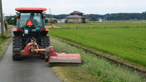 思い返して見ると今年はヘンな年でした。8月の草刈りが最後だとすると、本来ならもっともっと草が伸びているはずです。しかし、それほどでもありません。