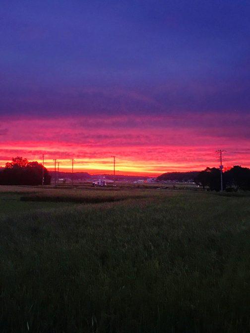 この間の夕焼け。写真を見るたび、ヒトの目は優秀だなぁ・・・と感じます。こんなモノではなかったのだけど・・・