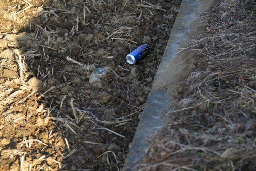 ビールの空き缶のポイ捨て。飲みながらクルマを運転しているのか、それともわざわざ家からこの缶を1コだけ持って出たのか・・・