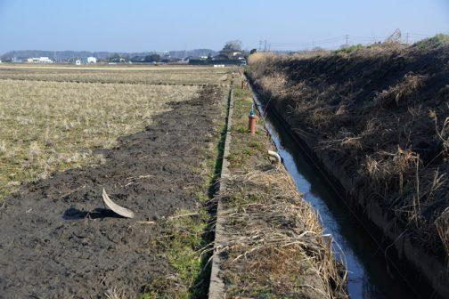 さらに先へ行くと土手と田んぼと両方に泥上げ。こうやって見ると水路のすぐ脇が土手になっているので、土手側の冊板が1枚追加されて高くなっています。