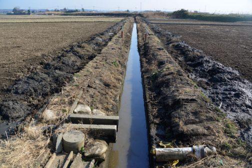 こんな感じ。排水路の中の草がなくなっています。