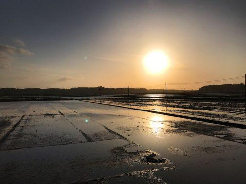 島地区は昨日から田植えが始まっていました。ほぼすべての田んぼに水が入っています。稚苗が成長してボーボーになるまでの数週間、1年で一番いい季節、田鏡の始まりです。
