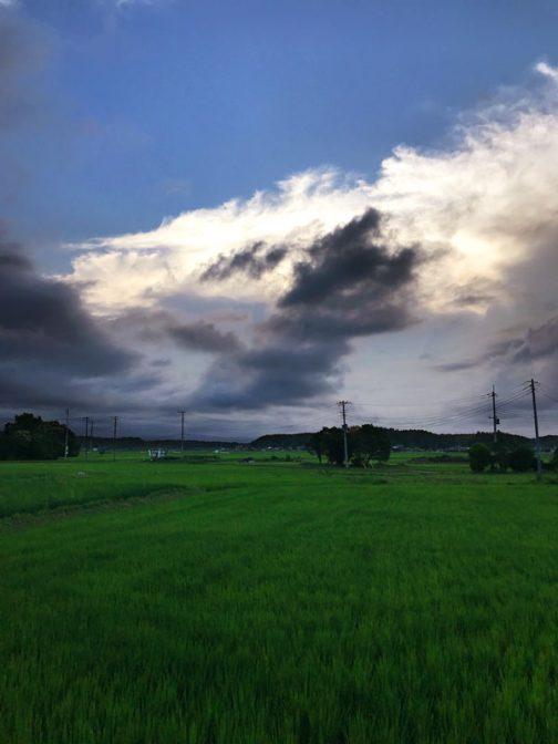 なんだか今回は日中の写真が多いです。黒い雲に覆われて、いまにもスコールが来そう。