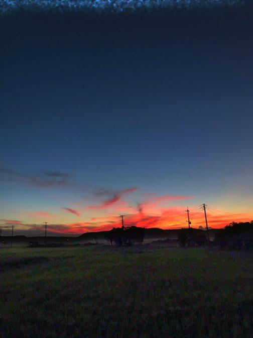 これもまた別の日です。一時空をピンクに染めた太陽も、もうすぐ闇に押え込まれます。