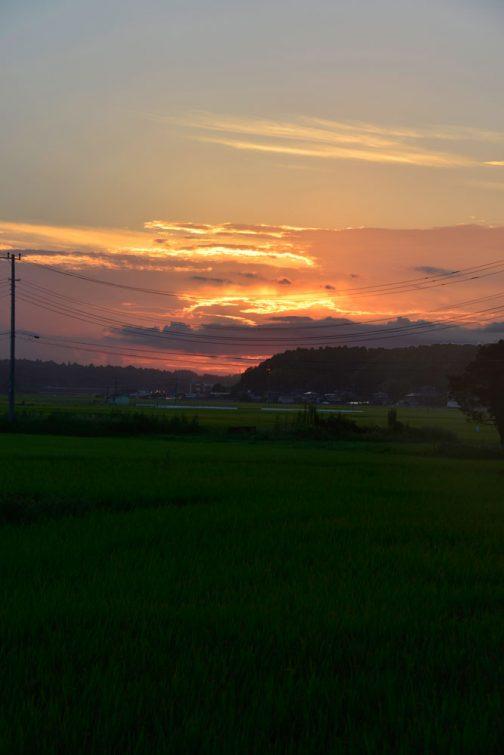 並べて見ると、お日様は:日が経つにつれ、南寄りに回り込んで行っているように思います。
